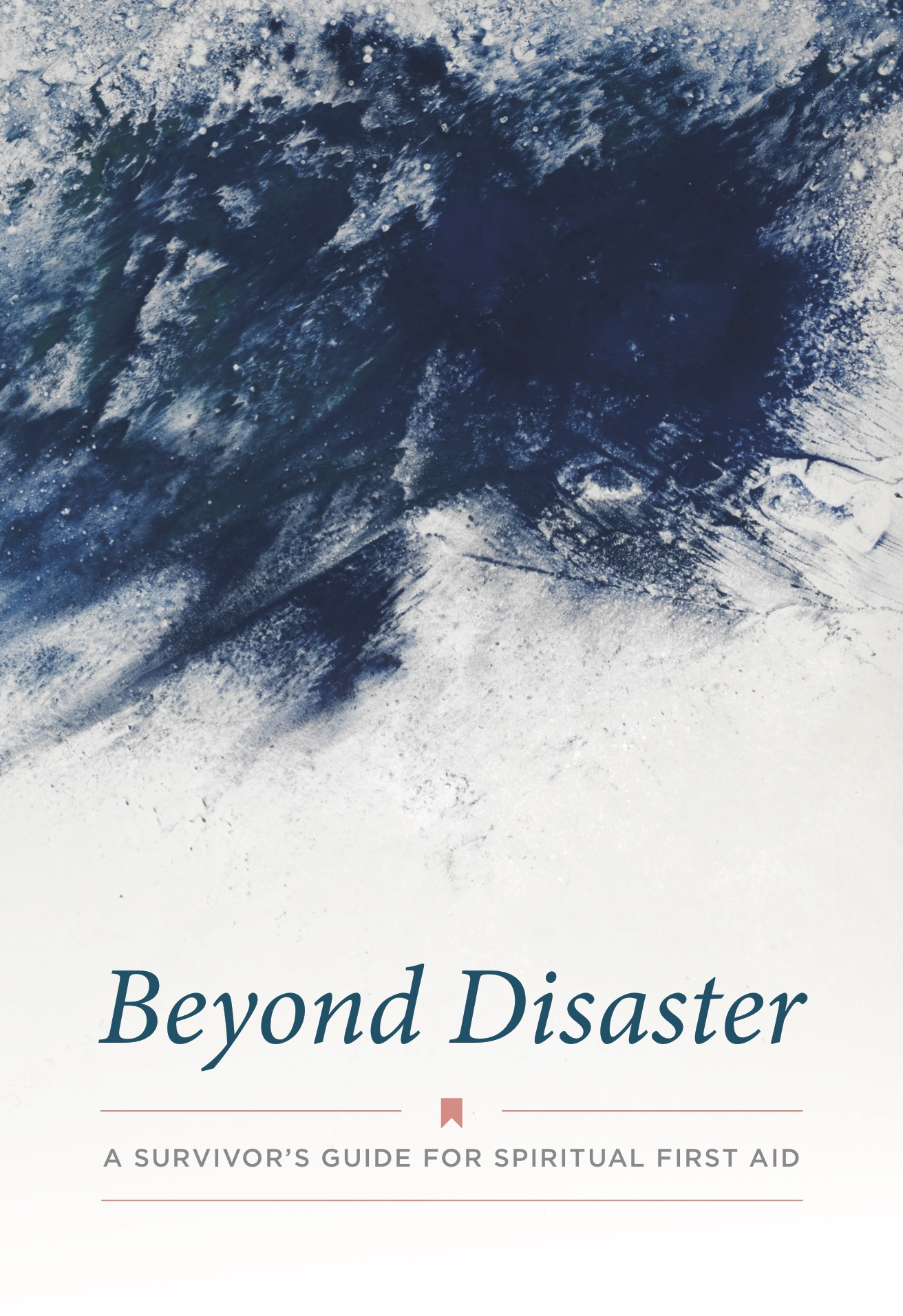 Beyond Disaster Booklet, cover image, English